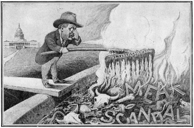 Cartoon of Teddy Roosevelt investigation
