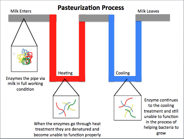 pasteurization process