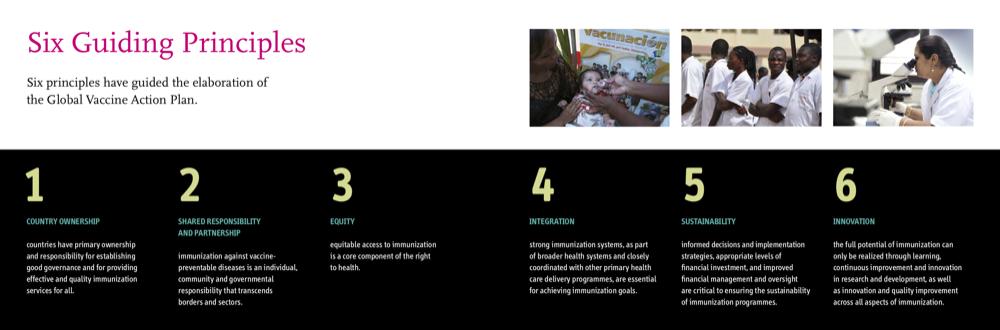 six guiding principles global vaccine action plan