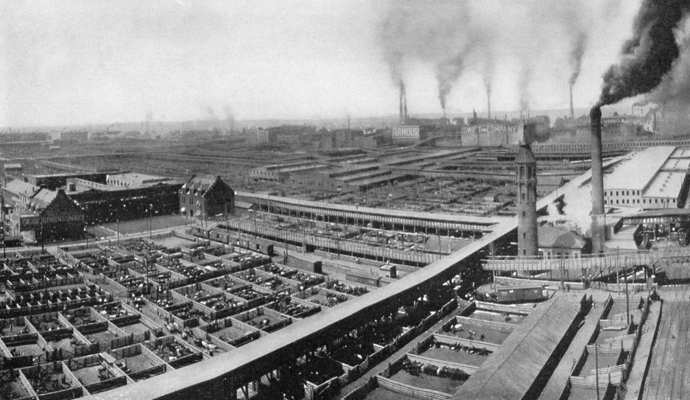 stockyards at Packingtown