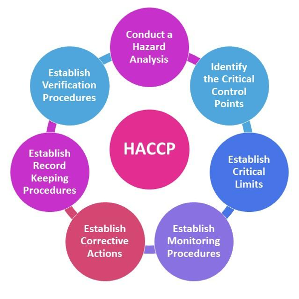 building out your haccp plan with the 7 principles